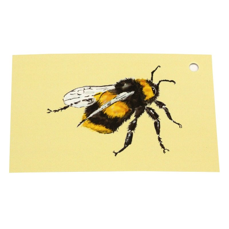 Re-wrapped: ECO Friendly Wrapping Paper Tags Bee Side by Sophie Botsford made from 100% Unbleached Recycled Paper