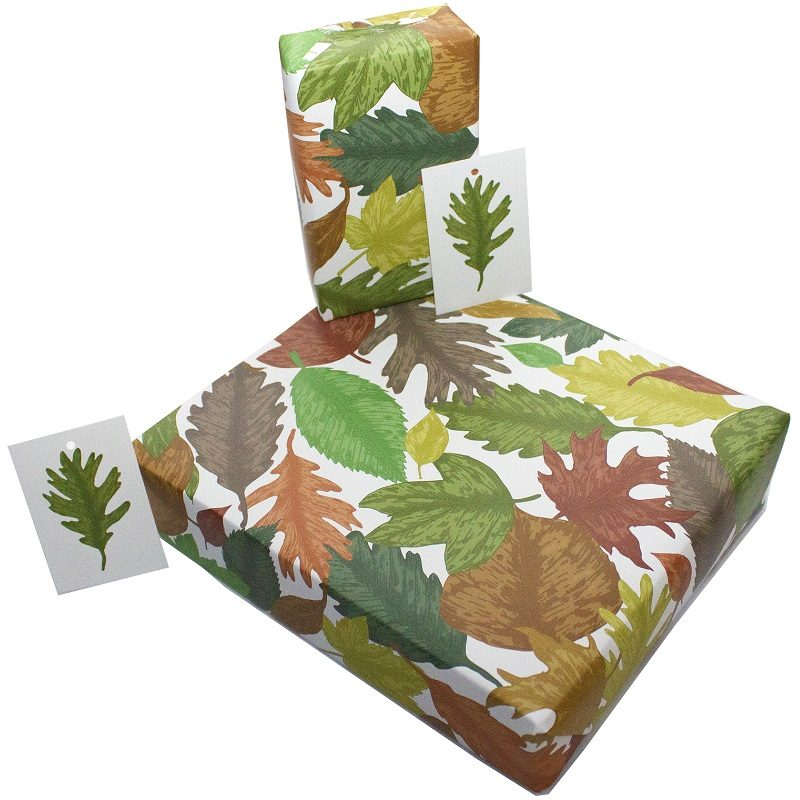 Re-wrapped: ECO Friendly Wrapping Paper Hand Drawn Leaves by Rosie Parkinson made from 100% Unbleached Recycled Paper