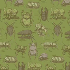 Re-wrapped: ECO Friendly Birthday Wrapping Paper Green Beatles by Rosie Parkinson made from 100% Unbleached Recycled Paper