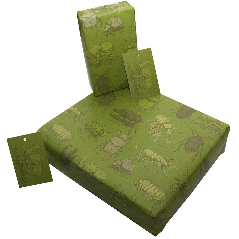 Re-wrapped: ECO Friendly Wrapping Paper Green Beetles by Rosie Parkinson made from 100% Unbleached Recycled Paper