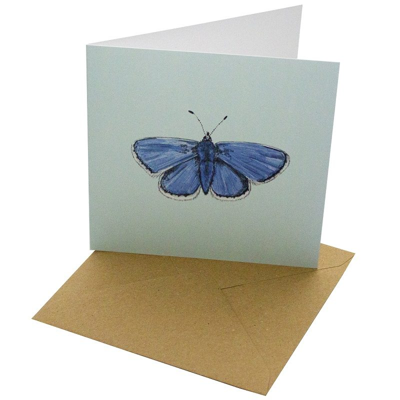 Re-wrapped: ECO Friendly Birthday Wrapping Paper Common Blue Butterfly Greetings Card by Sophie Botsford made from 100% Unbleached Recycled Card