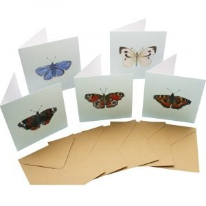 Re-wrapped: ECO Friendly Birthday Wrapping Paper Butterfly Large Pack Greetings Card by Sophie Botsford made from 100% Unbleached Recycled Card