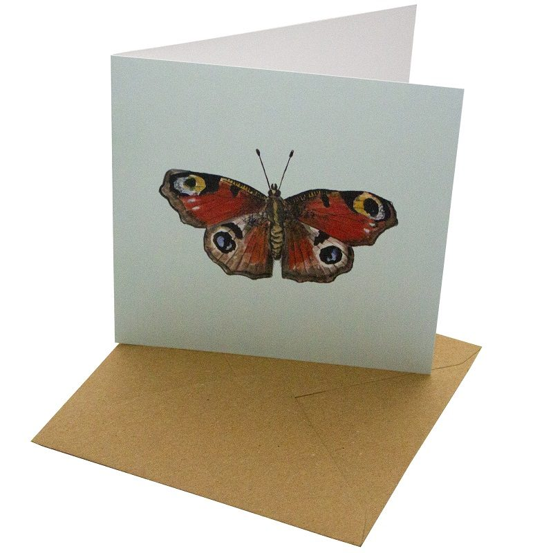 Re-wrapped: ECO Friendly Birthday Wrapping Paper Peacock Butterfly Greetings Card by Sophie Botsford made from 100% Unbleached Recycled Card