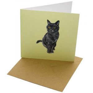 Re-wrapped: ECO Friendly Birthday Wrapping Paper Cat Breeds British Blue Greetings Card by Sophie Botsford made from 100% Unbleached Recycled Card