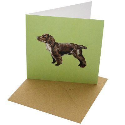 Re-wrapped: ECO Friendly Birthday Wrapping Paper Cocker Spaniel Dog Greetings Card by Sophie Botsford made from 100% Unbleached Recycled Card