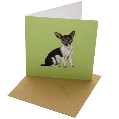 Re-wrapped: ECO Friendly Birthday Wrapping Paper Jack Russel Dog Greetings Card by Sophie Botsford made from 100% Unbleached Recycled Card