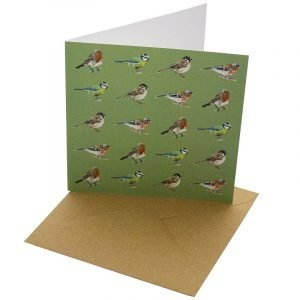 Re-wrapped: ECO Friendly Birthday Wrapping Paper Native Birds Greetings Card by Sophie Botsford made from 100% Unbleached Recycled Card