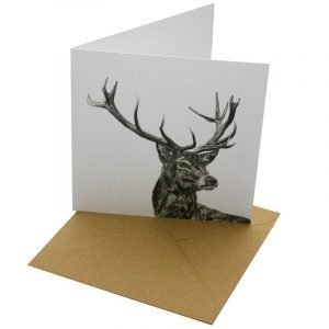 Re-wrapped: ECO Friendly Birthday Wrapping Paper Pen Stag Greetings Card by Sophie Botsford made from 100% Unbleached Recycled Card