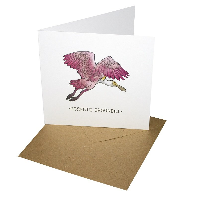 Re-wrapped: ECO Friendly Birthday Wrapping Paper Roseate Spoonbill Greetings Card by Tamsin Adley made from 100% Unbleached Recycled Card
